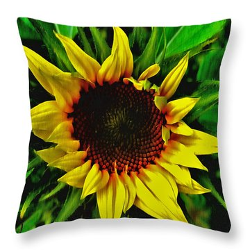 Helianthus Annus - Sunnydays Throw Pillow