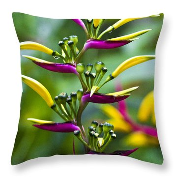 Heliconia Subulata II Throw Pillow