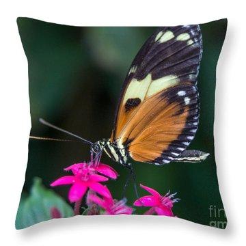 Heliconius Ismenius Throw Pillow