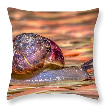 Throw Pillow featuring the photograph Helix Aspersa by Rob Sellers