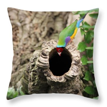 Hello... Anybody Home. Throw Pillow