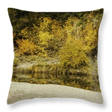 Hello Autumn Panorama Throw Pillow by Diane Schuster