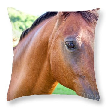 Throw Pillow featuring the photograph Hello Beauty by Roselynne Broussard