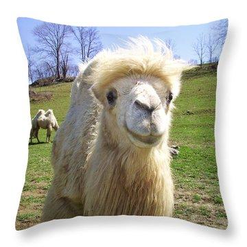 Hello Throw Pillow by Cynthia Guinn
