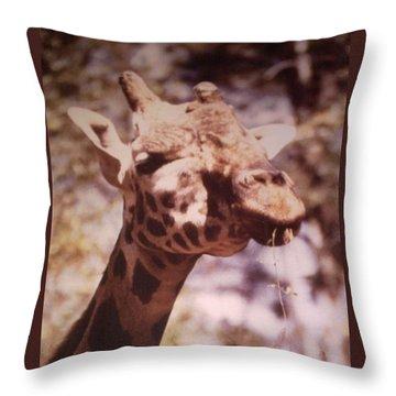 Velvety Giraffe Throw Pillow by Belinda Lee
