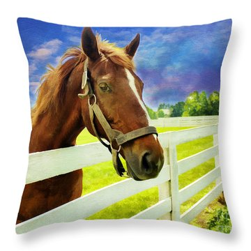 Hello From The Bluegrass State Throw Pillow