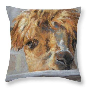 Hello Throw Pillow by Lori Brackett