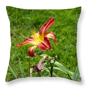 Hello Sunshine Throw Pillow