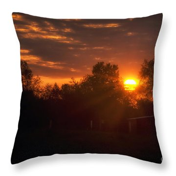 Hello Sunshine Throw Pillow by Thomas Woolworth