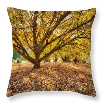 Hello Yellow Throw Pillow