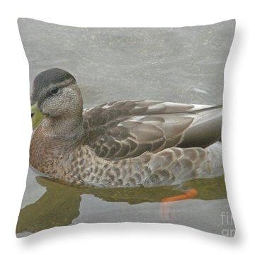 Hen Party Throw Pillow