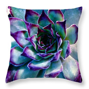 Hens And Chicks Series - Evening Hues Throw Pillow by Moon Stumpp