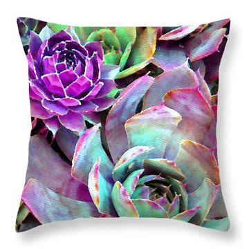 Hens And Chicks Series - Urban Rose Throw Pillow by Moon Stumpp
