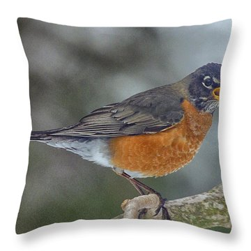Throw Pillow featuring the photograph Heralding Spring by Constantine Gregory