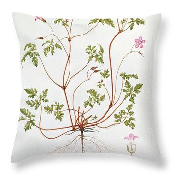 Herb Robert Throw Pillow