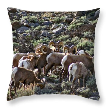 Herd Of Horns Throw Pillow