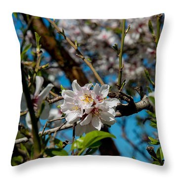 Here Comes Spring 15 Throw Pillow