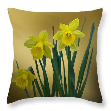 Throw Pillow featuring the photograph Here Comes Spring... by Judy  Johnson