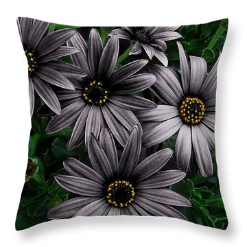 Here Comes The Night  Throw Pillow by Steve Taylor