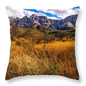 Here To There Throw Pillow