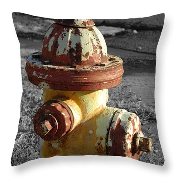 Throw Pillow featuring the photograph Here When You Need Me by Lena Wilhite