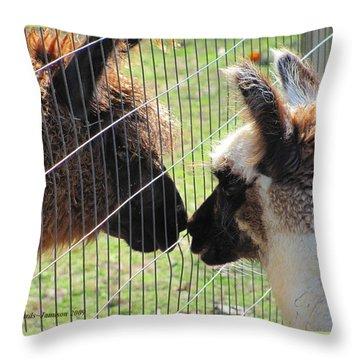 Heres A Llama Theres A Llama Throw Pillow