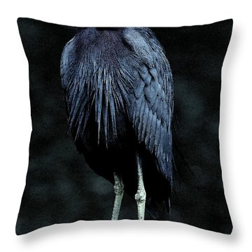 Here's Lookin' At Ya Throw Pillow