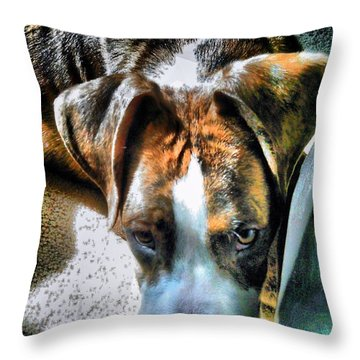 Throw Pillow featuring the photograph Here's Lookin Atchya by Robert McCubbin