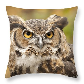 Here's Looking At You Throw Pillow by Carol Lynn Coronios