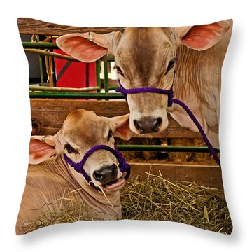 Heres Looking At You Throw Pillow by Michael Porchik