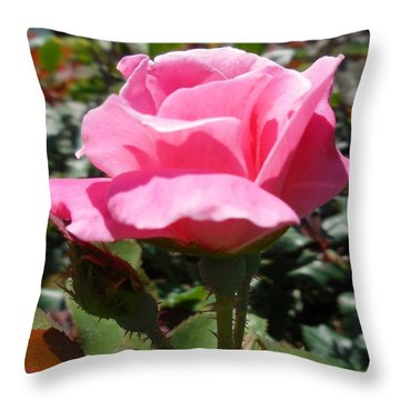 Here's To New Beginnings Throw Pillow by Eloise Schneider