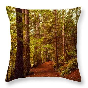 Hermitage Throw Pillow