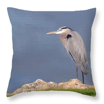 Heron And Pond Throw Pillow by Kenny Francis