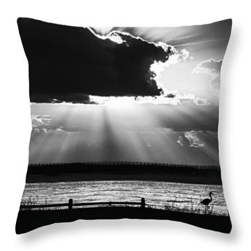 Throw Pillow featuring the photograph Heron And  The Cloudburst by Michael Thomas
