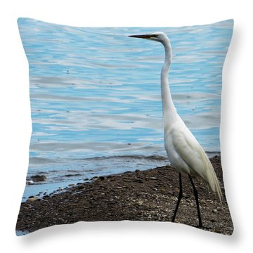 Heron By The Beach Throw Pillow