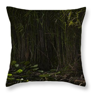 Heron In Grass Throw Pillow