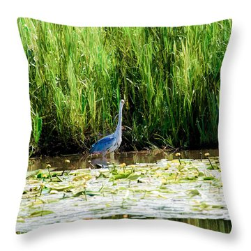 Throw Pillow featuring the photograph Heron by Leif Sohlman