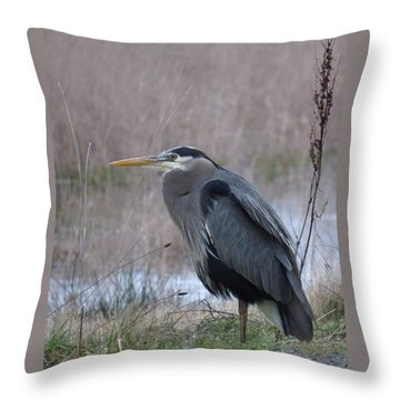 Throw Pillow featuring the photograph Heron Moment by I'ina Van Lawick