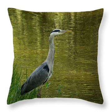 Heron Statue Throw Pillow