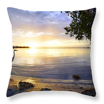 Heron Sunrise Throw Pillow