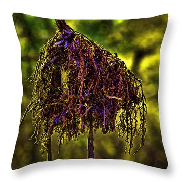 Throw Pillow featuring the photograph Heron Totem by Gary Holmes