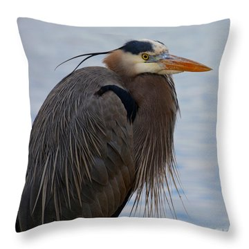 Heron's Looking At You Kid Throw Pillow