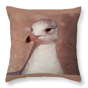 Throw Pillow featuring the photograph Beach Gull On The Hunt by Belinda Lee