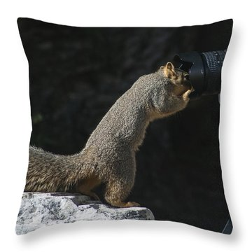 Hey Anybody Home? Throw Pillow
