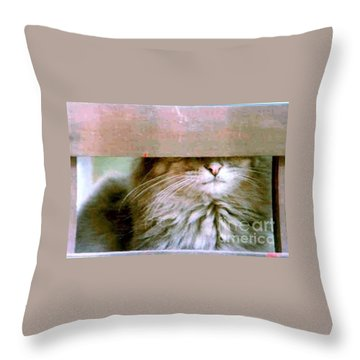 Throw Pillow featuring the photograph Hey Diddle Diddle by Michael Hoard