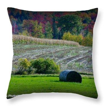 Hay Fall Throw Pillow