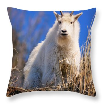 Hey Good Looking Throw Pillow