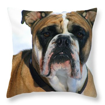 Throw Pillow featuring the photograph Hey Good Looking by Kay Novy