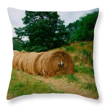 Hey- Hay Roll Throw Pillow