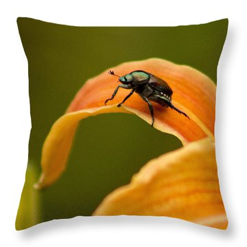 Hey There Throw Pillow